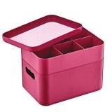 Herzberg HG-OKY676: Caja organizadora multiusos de 2 capas Rosa
